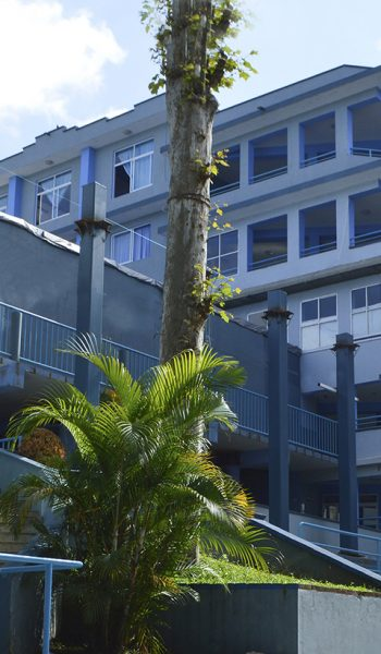 Imagen 5_Edificio